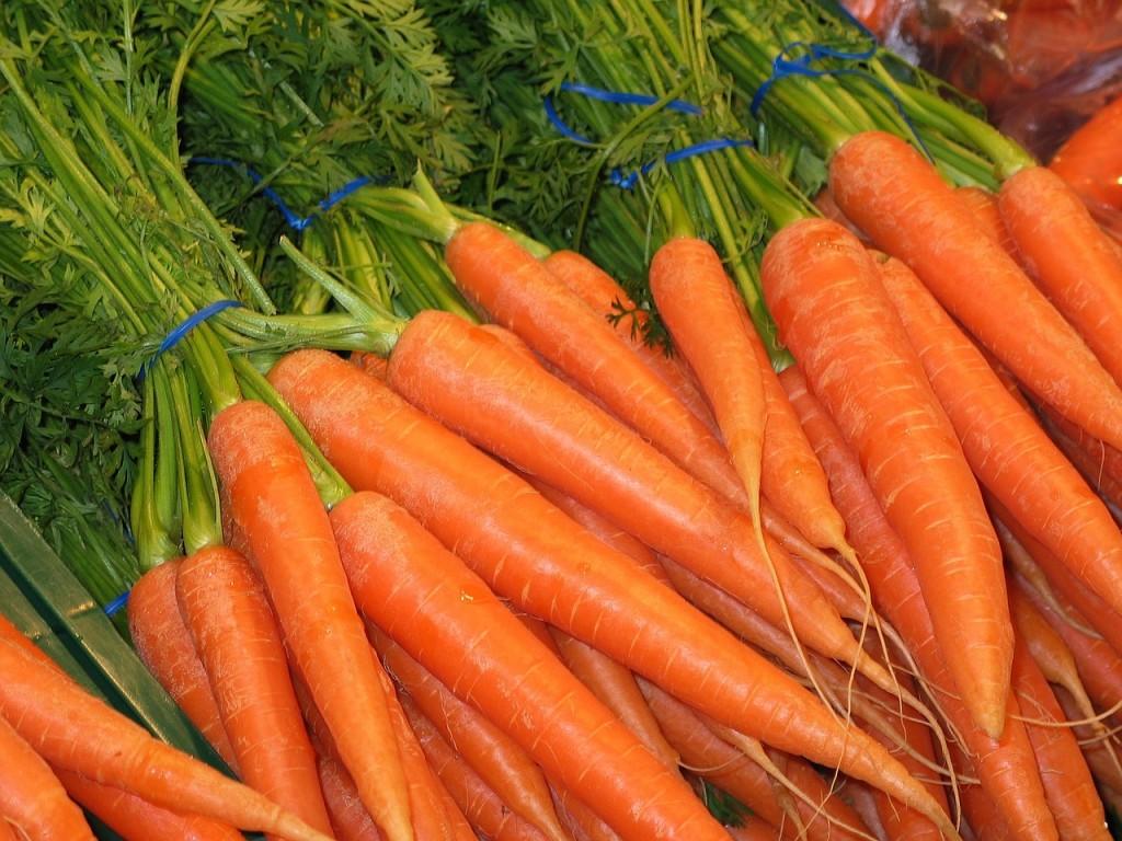 Zanahoria. Fruvesur